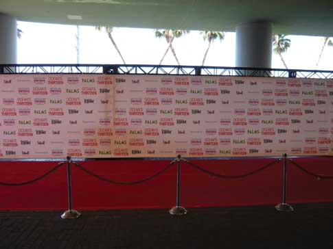 A red carpet style backdrop for guest photos, in lieu of a photo booth.